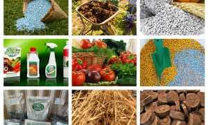 Виды удобрений и их классификация