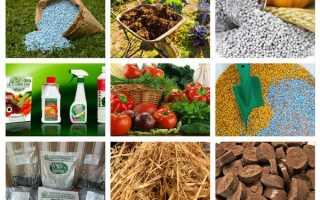 Виды удобрений и их особенности