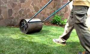Каток для газона – применение и изготовление своими руками